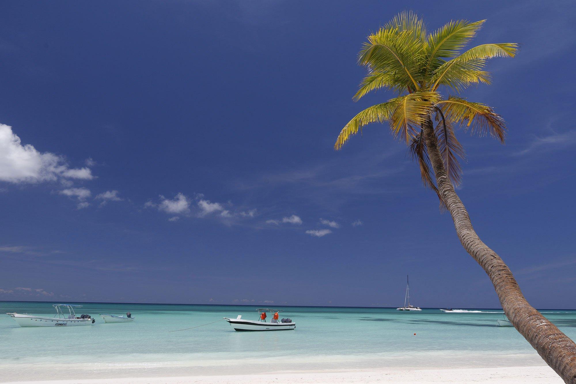 Caribbean Contrast